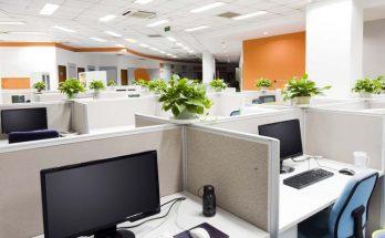 oficinas baja tension
